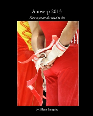 Antwerp 2013 book cover