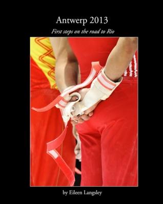 Antwerp 2013 book cover