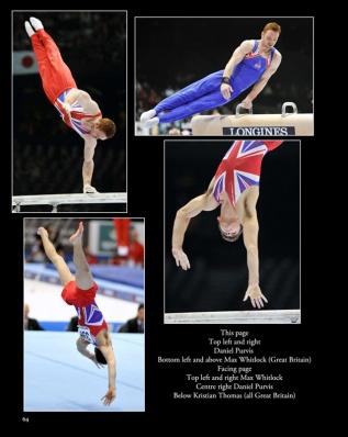 2013 World Gymnastics Championships Antwerp